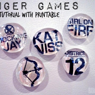 Hunger Games Magnets