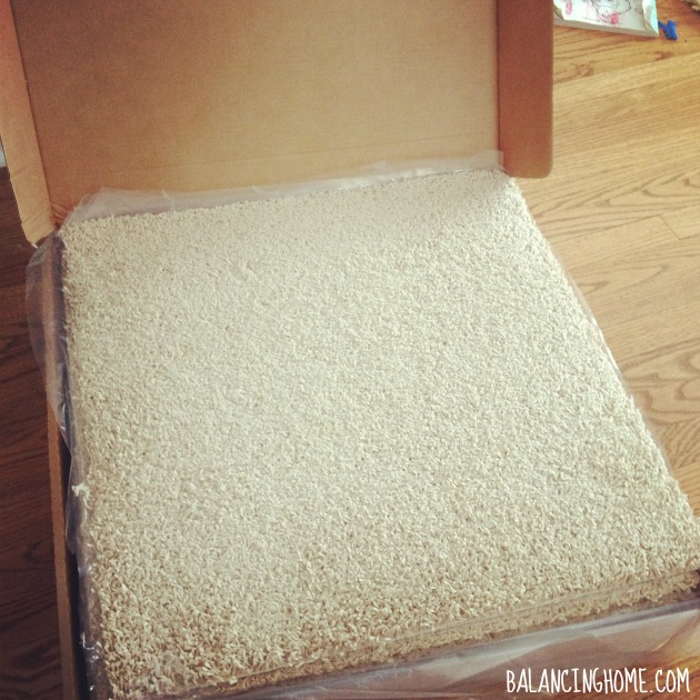 Carpet Squares #biggirlroom
