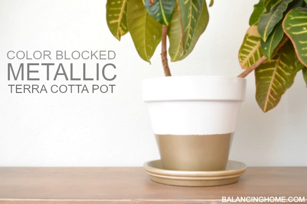Color Blocked Metallic Terra Cotta Plant