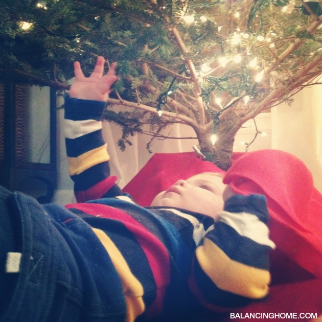 baby-christmas-tree-wonder