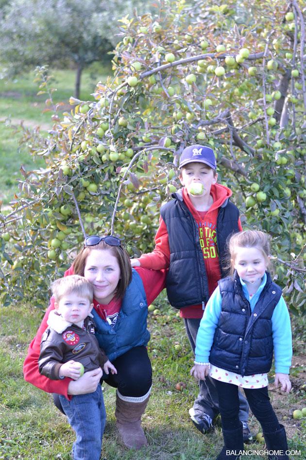 apple-picking-17