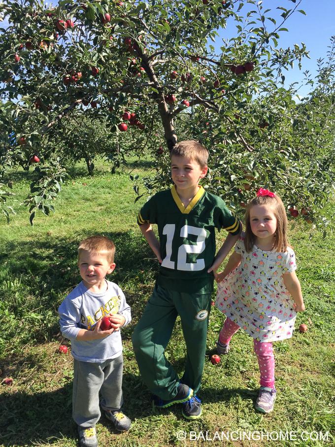 apple-picking-2015-55