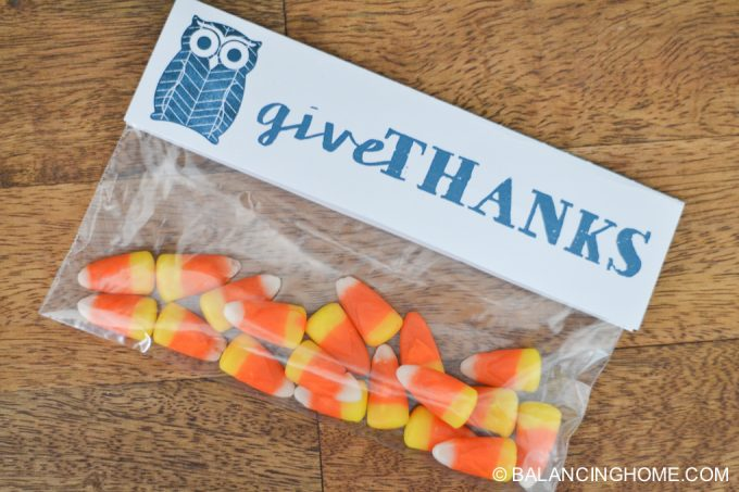 thanksgiving-fall-owl-printable-pack-35