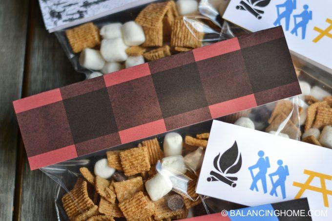 camping-bonfire-birthday-printables-4