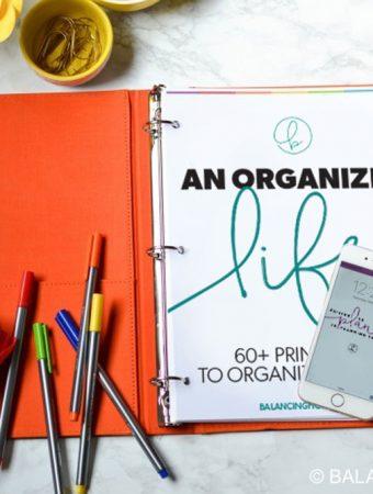 An Organized Life eBook