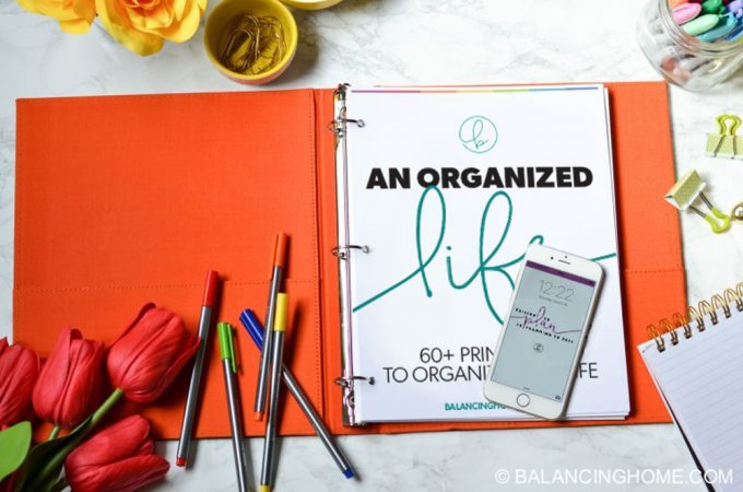 An Organized Life eBook